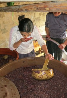 <b><p>Wu Gongdi's daughter-in-law testing the degree of fermentation.</b></p> Additionally, most villagers including Wu Gongdi add sugar when they crush the grapes, indicating that this helps with fermentation and increases sweetness. Indeed 'Rose Honey' itself is a rather sweet varietal of grape and makes a better dessert wine over a dry wine in the views of the authors.