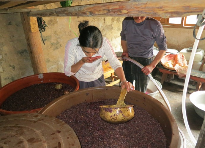 <b><p>Wu Gongdi's daughter-in-law testing the degree of fermentation.</b></p>