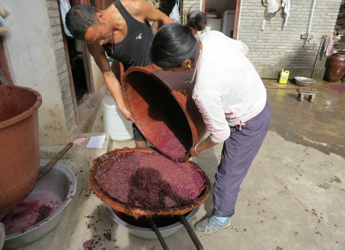 <b>Sieving the fermented wine.</b> <p>Second Step</p> After being left to ferment for three to ten days, the length depending upon the maturity and sweetness of the grapes, the wine is filtered or sieved through bamboo baskets and cheesecloth.