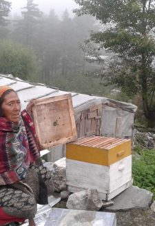 Beekeeper. (Tshering Gurung, July 2016)  Within the region formerly known as Kunjo VDC (Village Development Committee), beekeeping is an important livelihood strategy along with agricultural production. the government has been providing technical support, and some women are able to make a small income selling honey.